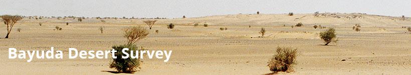 Bayuda Desert Survey
