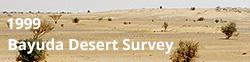 Fieldwork - Bayuda Desert Survey