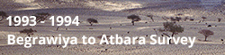 Fieldwork - Begrawiya to Atbara